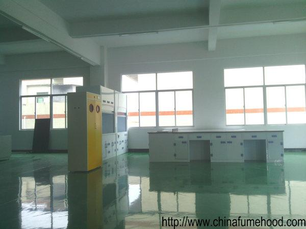 China Cheap Laminar Flow Fume Hood in Laboratory Ventilation System