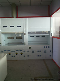 Chinese Fume Hood Industry Production PP Lab Products For Oversea Suppliers
